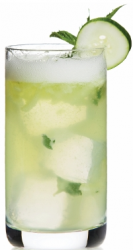 mint cucumber cooler